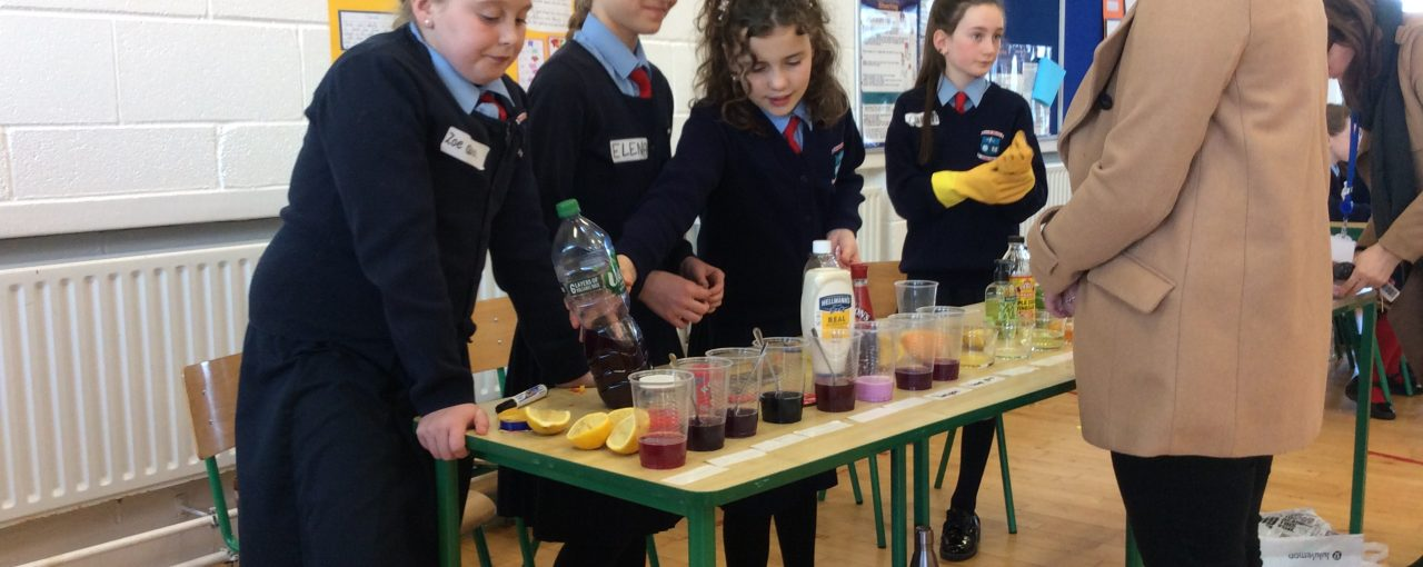 Scoil Bhríde's Mini Scientist 2019